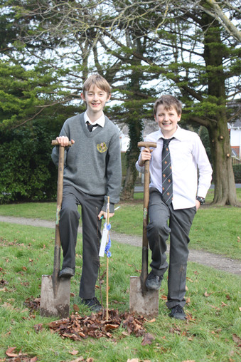 New Trees for National Tree Week