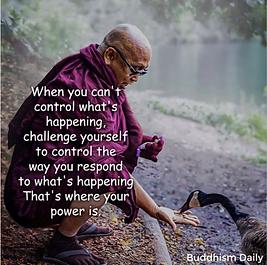 BuddhistWisdom.png