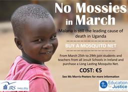 Mosquito Net Campaign