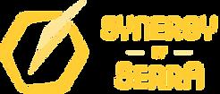 Synergy of Serra logo 02.png