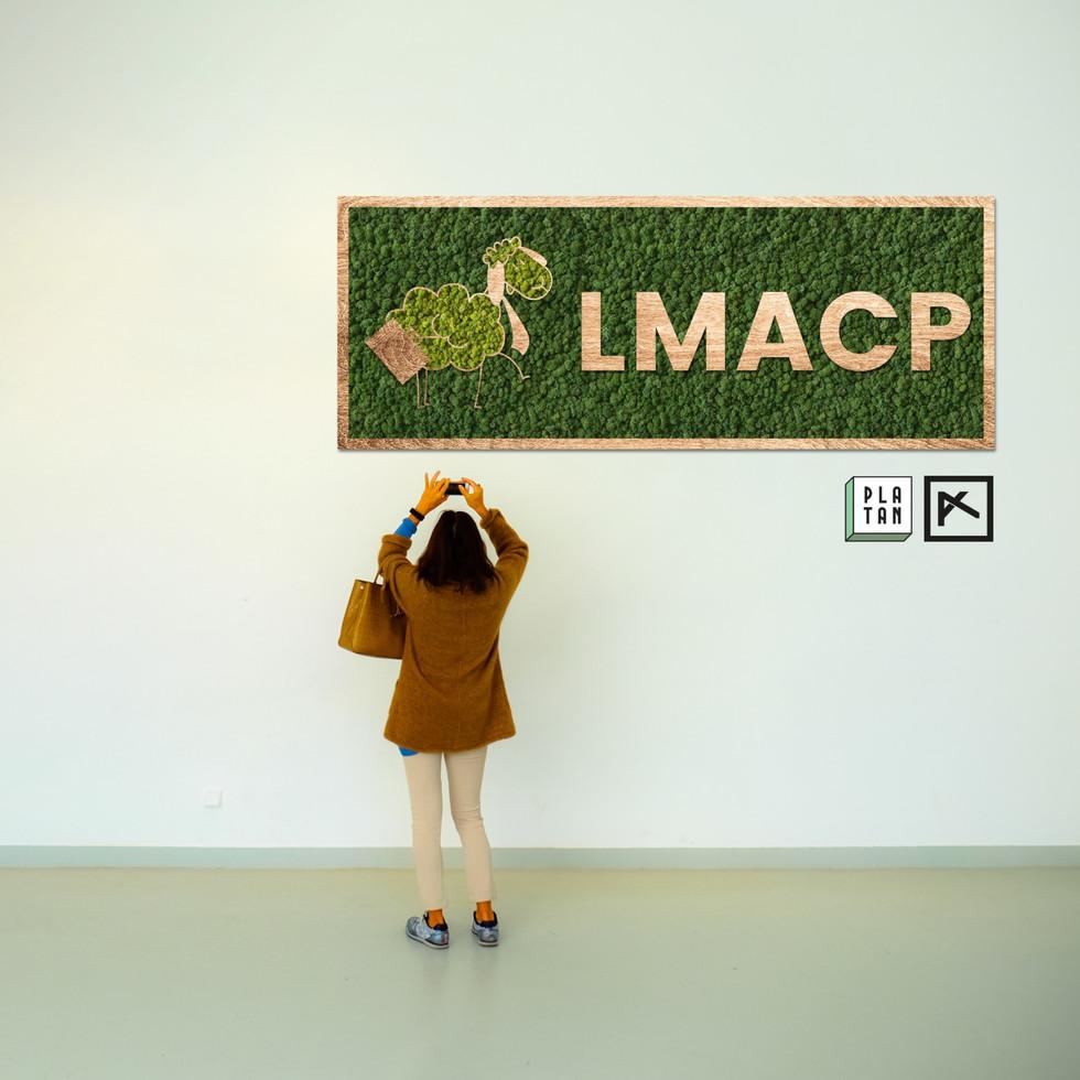 LMACP_alxi_edited.jpg