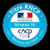 titre-rncp-sodi-formation-2018-gradient.
