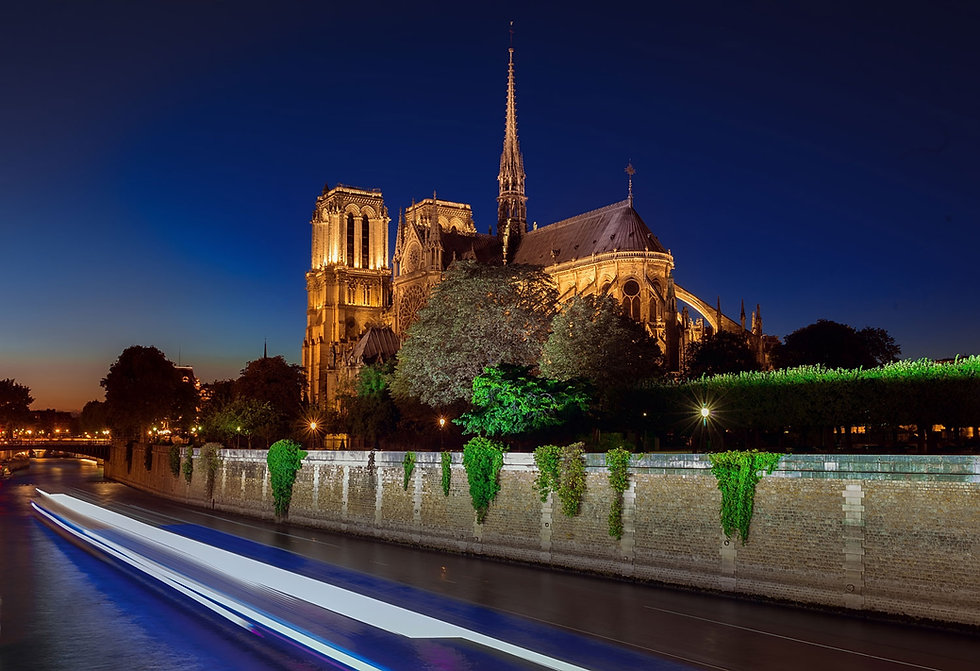 notre-dame-cathedral-at-night-P36F5UG.jp