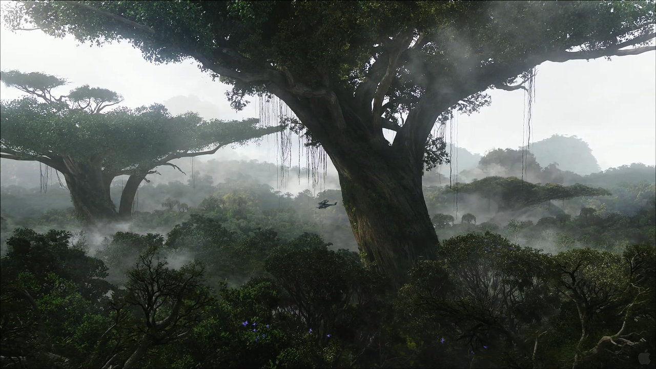Equatorial region
