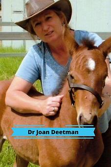 Dr Joan Deetman.png