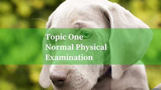 Topic One : Normal Physical Exam