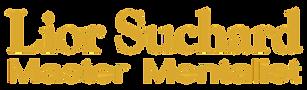 לוגו ניסיוני.png