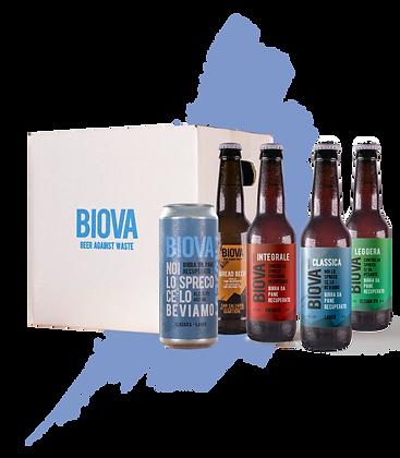 biova lockdown kit x12