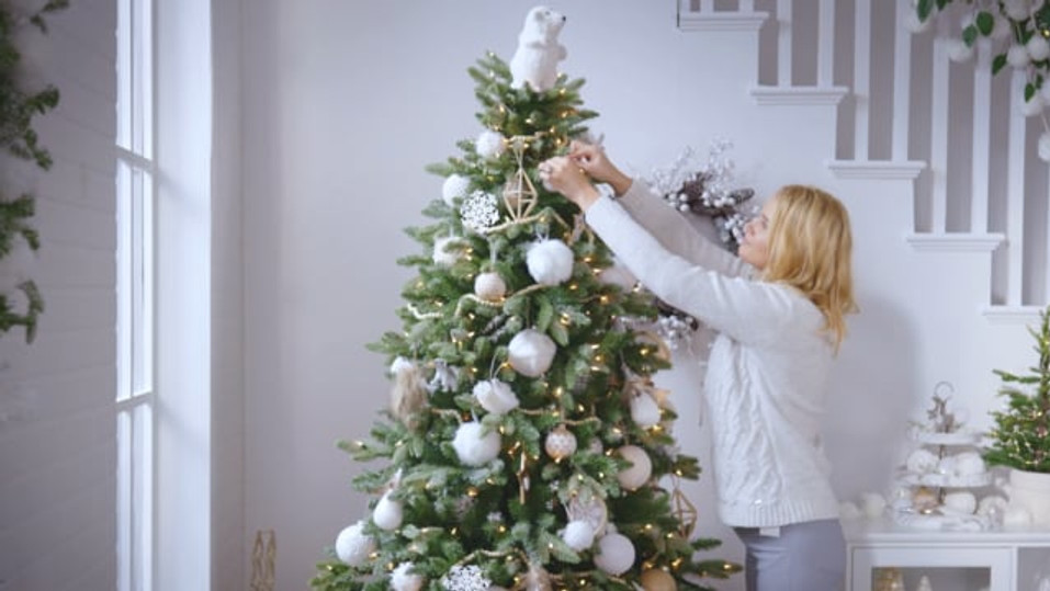 Canadian Tire - Canvas Christmas