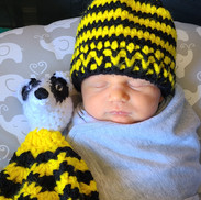 Badger House Baby Blanket and Newborn Hat