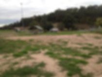 Greyhound track | Yarra Valley Sawdust & Shavings
