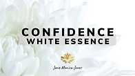 Confidence Meditation