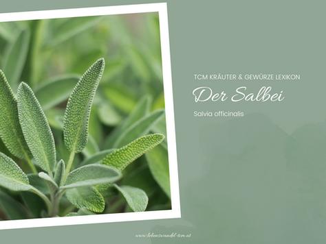 Der Salbei - schweißtreibend & trocknend