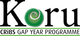 Koru gap year logo