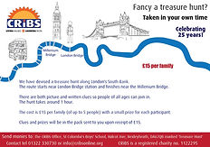 Treasure Hunt Flyer.jpg