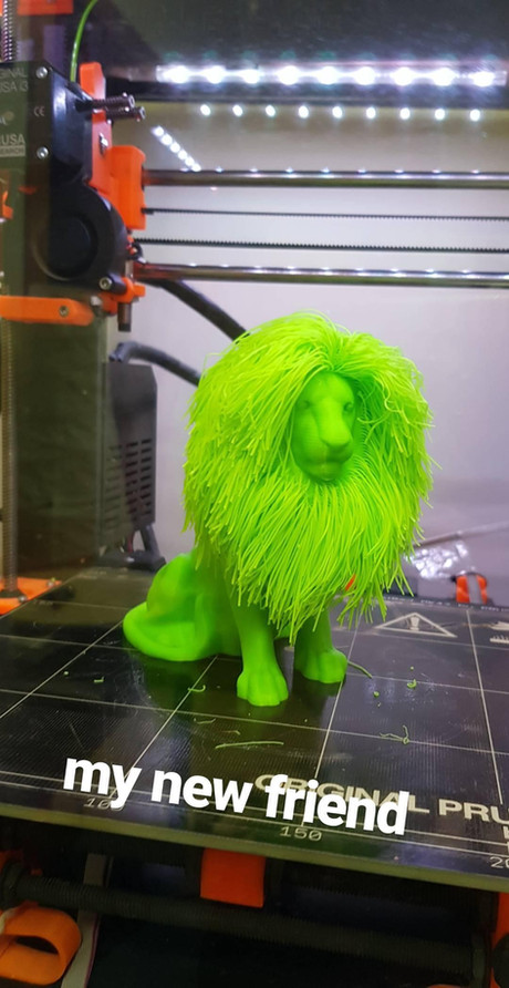 Hairy Lion my new 3D print element to add to my collection