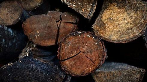 Karakteristik-kayu-meranti-1.jpg