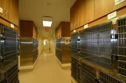 Bartels & Busack Pet Hospital