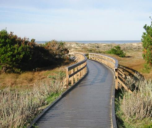 boardwalk-to-the-beach.jpg