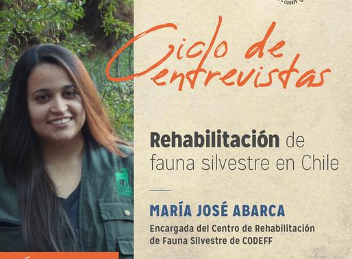 Rehabilitación, uno de los eslabones a robustecer para mejorar la conservación de flora y fauna