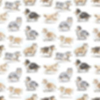 So many collies ❤️ Repeating pattern des