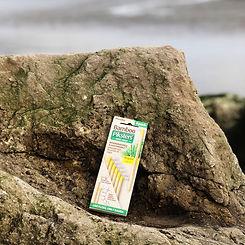 Bamboo Interdental Brushes.jpg