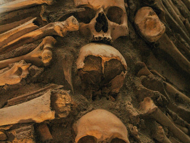 Neanderthals, Broken Bones & COVID Isolation