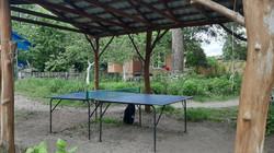 Настольный теннис база отдыха Пирново
