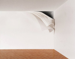 """Peeling Wall"". 2011"