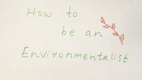 Everyone Can Be an Environmentalist!