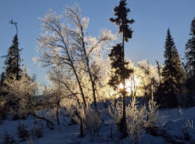 vinter-solnedgang-lysere-tider-foto-paal