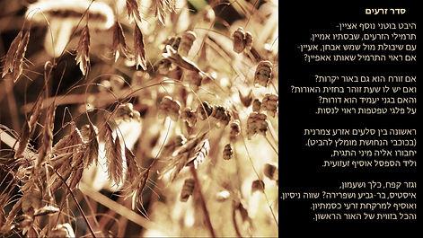 סדר זרעים.jpg