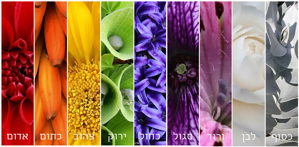 גנים לפי צבע
