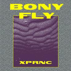 Bony Fly