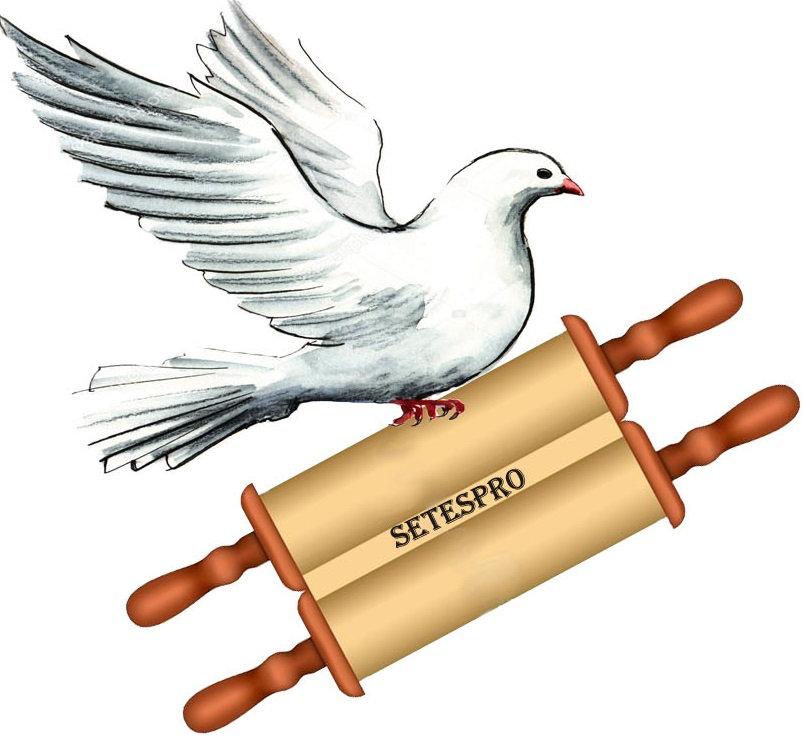 Logo Teologia Carmelo.jpg