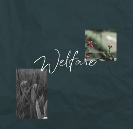welfare-strip_01.jpg