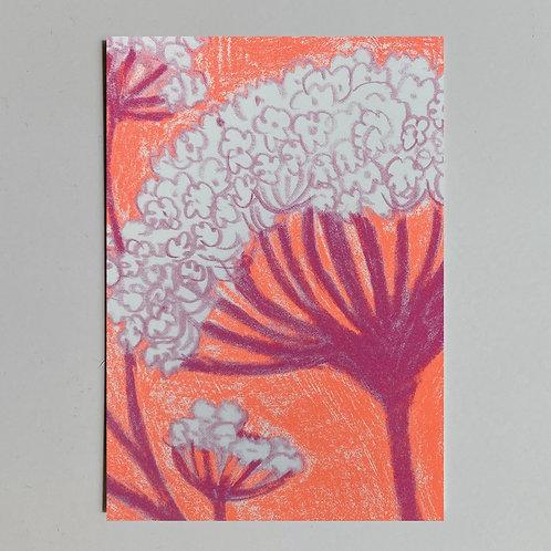 "Carte de voeux ""Dessin fleurs orange rose"""