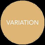 variation.png