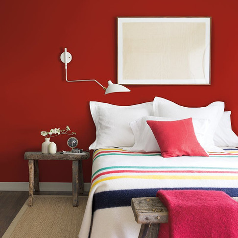 Colors of the Year Offer Bold Choices
