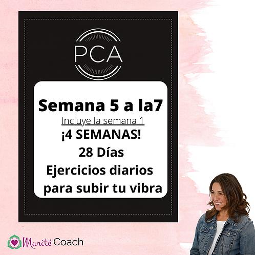 Materiales PCA Semanas 5 a la 7