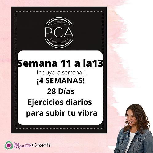 Materiales PCA Semanas 11 a la 13