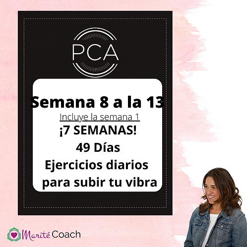 Materiales PCA Semanas 8 a la 13