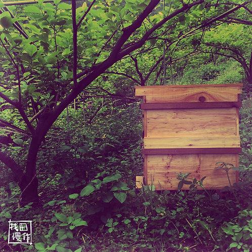 Exclusive Raw Honey - WILD SPRING