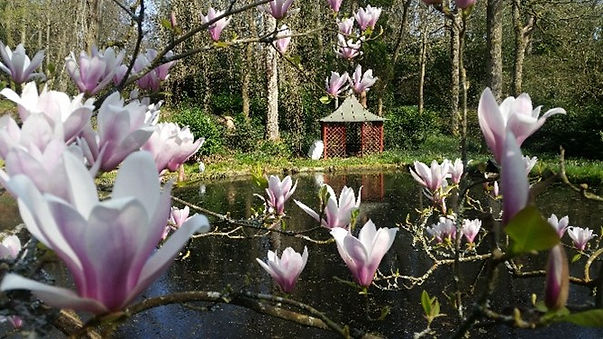 Dell Lower Pond.jpg