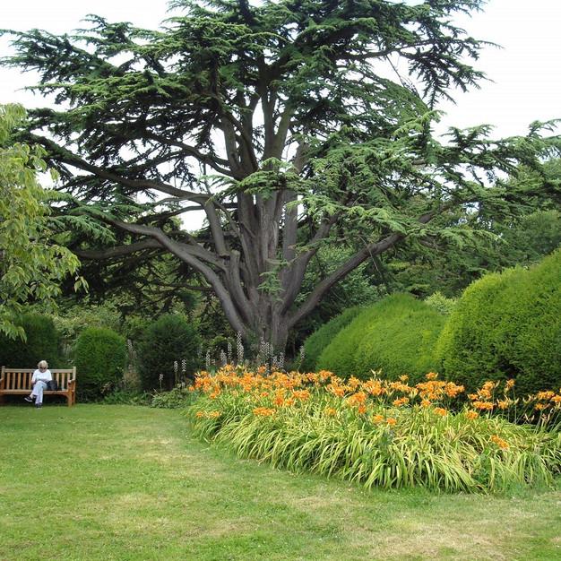 Eton College Gardens