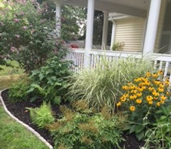 Weed, edge and mulched in Niantic CT