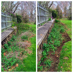Weeding and edging in East Lyme, CT