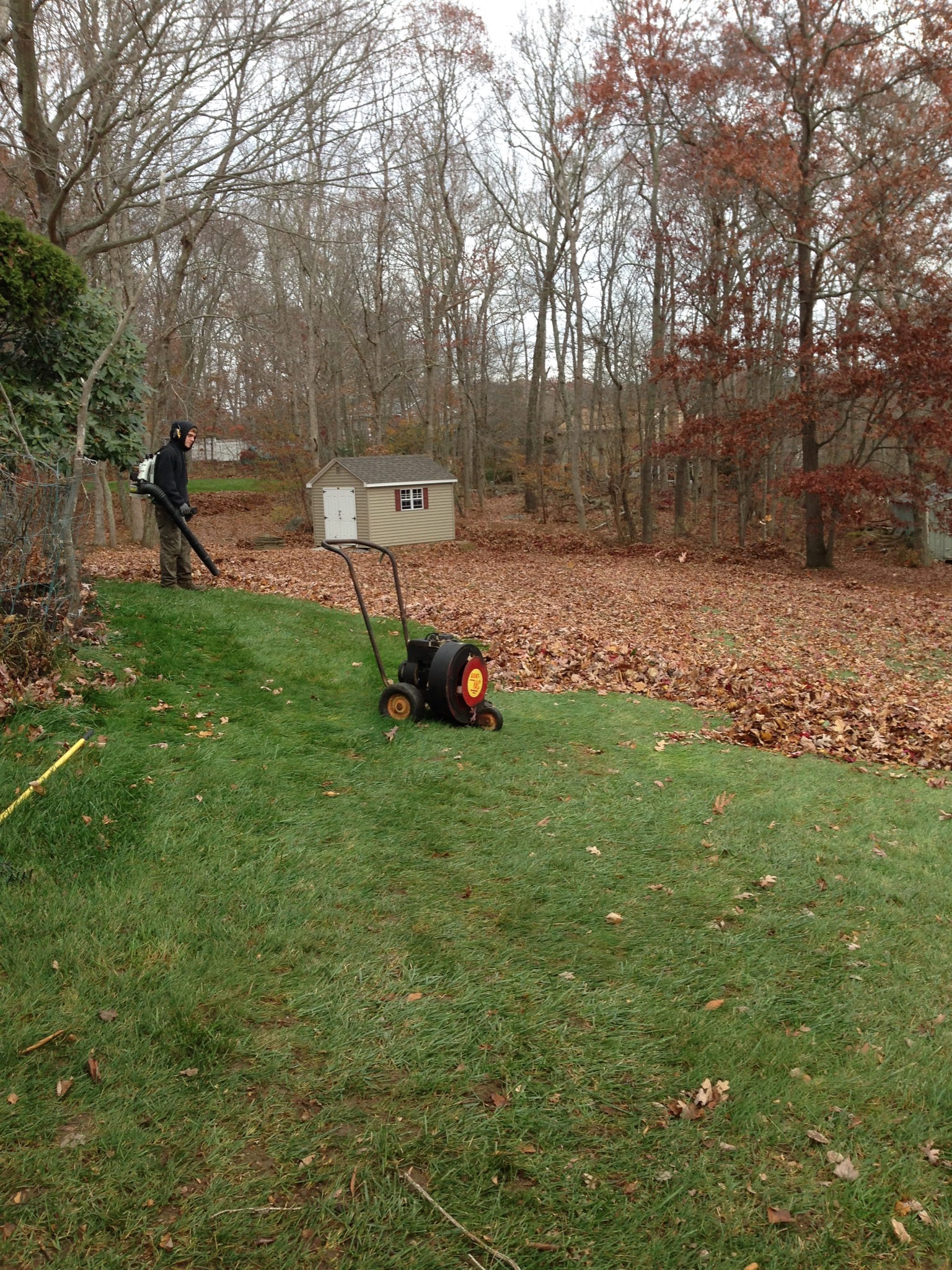 Fall Clean up in East Lyme, CT