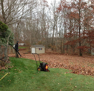 Landscaping fall leaf clean up, blowing leaves with backpack blower in East Lyme, Connecticut.