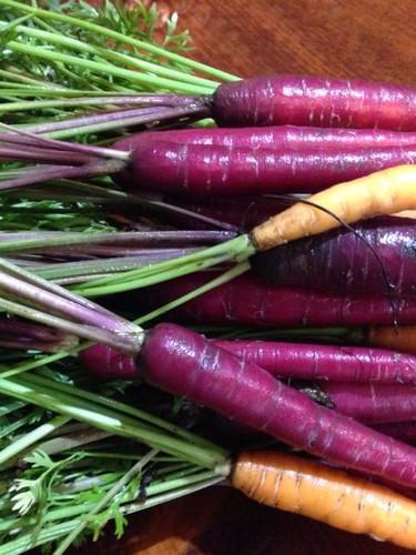Heirloom Veggies have the best colors.